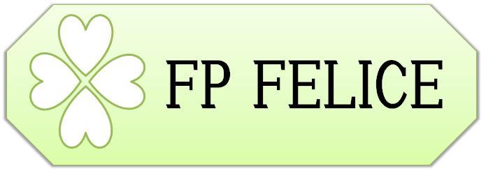 札幌市円山の独立系ファイナンシャルプランナー FP フェリーチェ